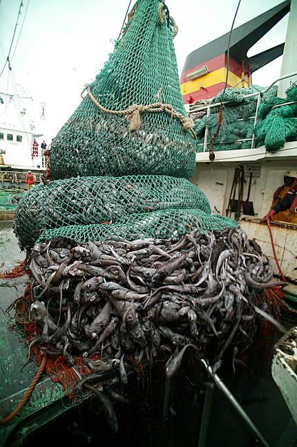 spanish_trawler